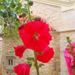Sommer Urlaub in Kreta