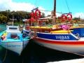 Boot reise Kreta (17)